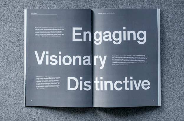 NEVS annual report design