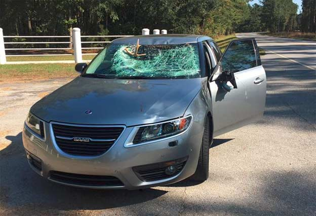 Deer collision with Saab 9-5 NG
