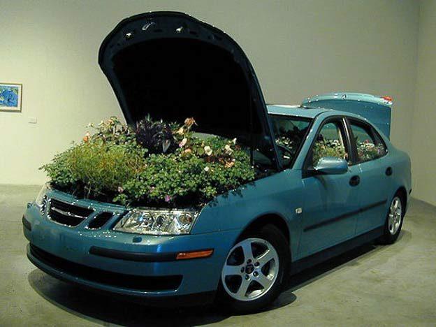 Saab Flowerbeds