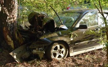 Saab hit a tree, the driver went to the hospital 2