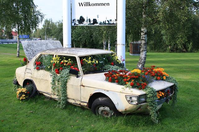Floral Saab 99